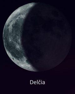 delcia