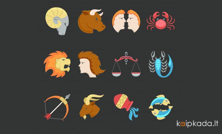 12 zodiako zenklu