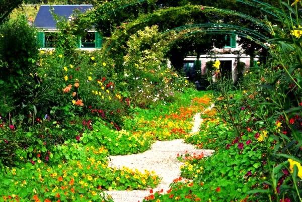 Claude Monet sodas 3
