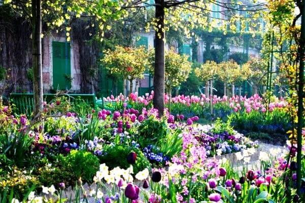 Claude Monet sodas 4