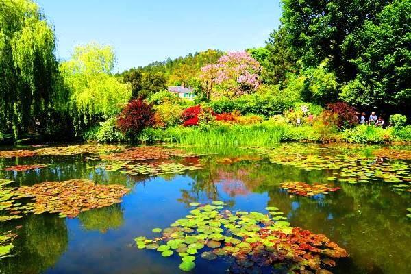 Claude Monet sodas 6