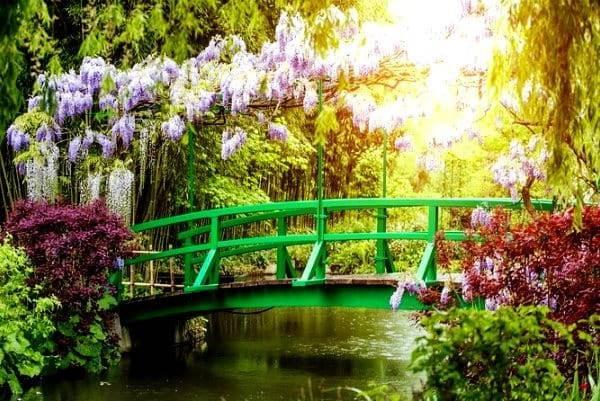 Claude Monet sodas 7