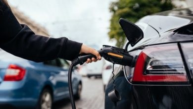 elektromobilio parama