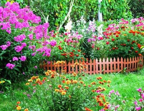 kaimisko stiliaus sodas