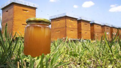 tikras lietuviskas medus