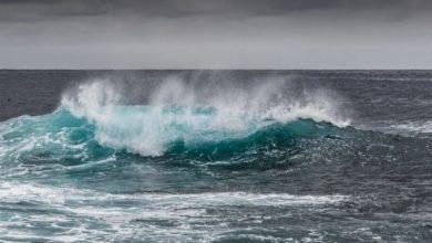 Mokslininkai pasakoja kas nutiktu jei vandenynuose isnyktu visa druska
